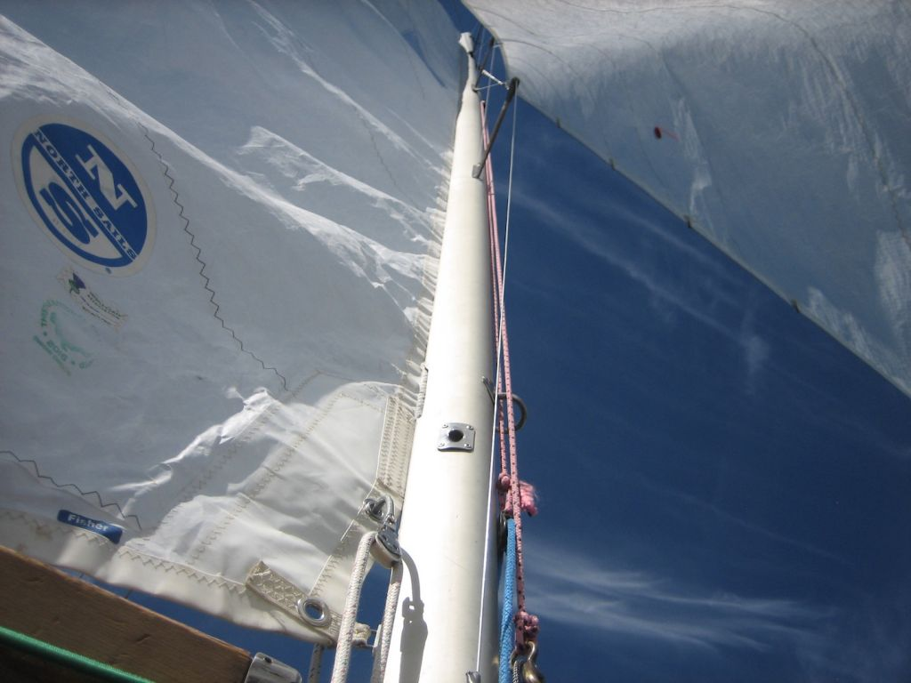 thistle-class-racing-echo-sail-check-mast
